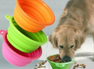Alfie ordered our Silicone Pet Expandable/Collapsible Travel Bowl from hanchuan